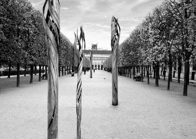 Racines - Jardins du Palais-Royal - Paris - Photo Montage