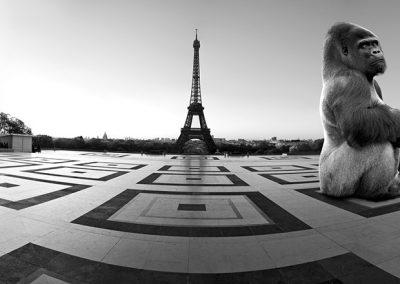 Yaoundé sur le parvis des droits de l'homme - Trocadéro - Paris
