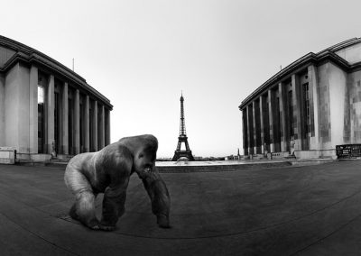 Yaoundé au Trocadéro - photo montage