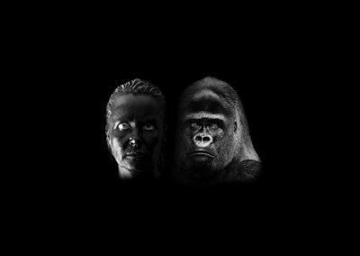 Série noire - le face à face - Yaoundé et CS