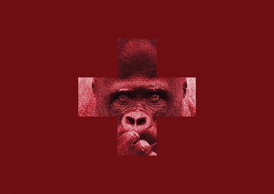 Série rouge - Yaoundé