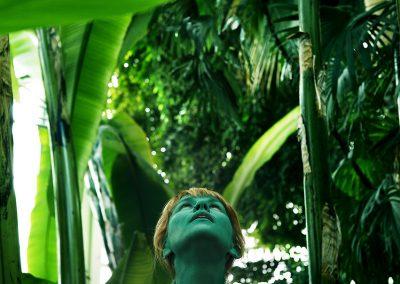 Série verte - CS - Grande Serre tropicale du Jardin des Plantes - Paris - photo sans montage