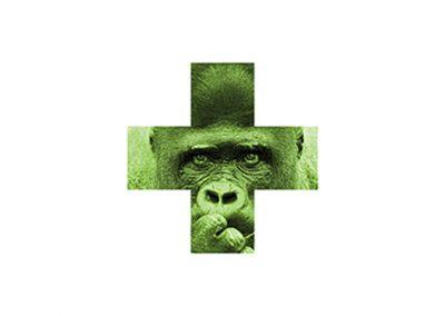 Série verte - Yaoundé