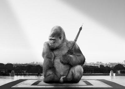 Triptyque.01 Yaoundé sur le parvis du des droits de l'homme - Trocadéro - Photo montage